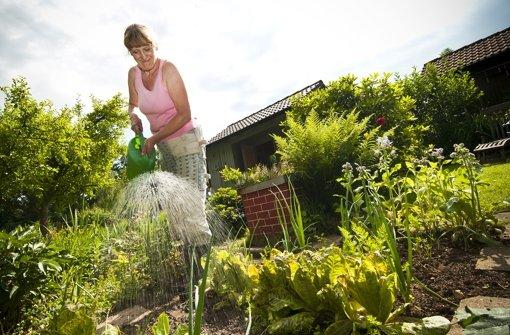 Gepflegter Garten Foto: ppfotodesign