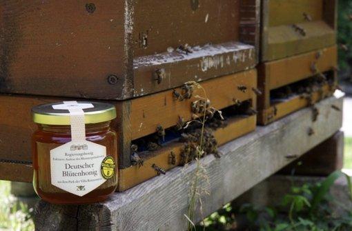 Wahlkampf - Wo der Honig fließt