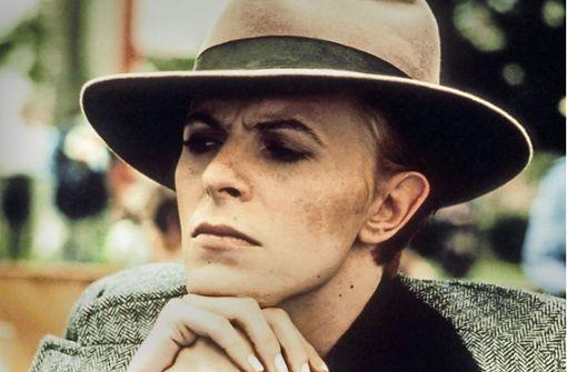 Wunderkauz David Bowie auf Wassersuche