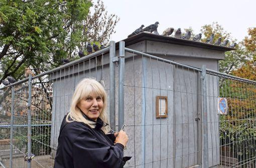 Die Tage des Taubenhauses auf dem Mühlgrün sind gezählt. Die Taubenbeauftragte Silvie Brucklacher-Gunzenhäußer bedauert das. Sie ist skeptisch, ob ein Umzug der 150 Tiere in den Taubenturm am Seilerwasen klappt. Foto: Iris Frey