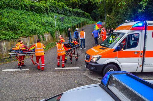 Großeinsatz für den Rettungsdienst in Weingarten: Hornissen haben eine Wandergruppe attackiert. Foto: 7aktuell.de/Fabian Geier