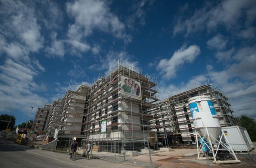Grüne wollen grüne Wiese für Wohnungsbau opfern
