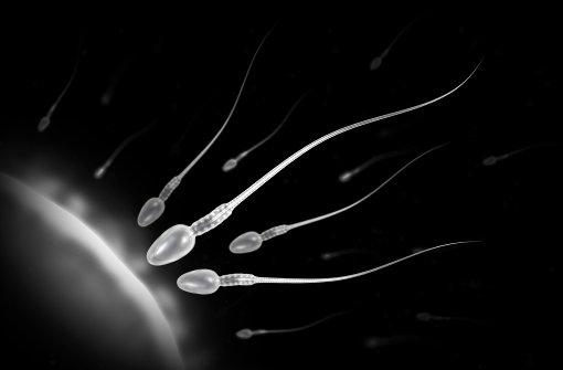 """Unfruchtbarkeit: """"Zu 50 Prozent liegt es am Mann"""" - Web & Wissen ..."""