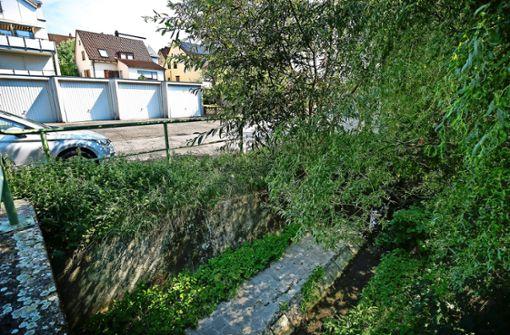 Der Lachengraben soll ungefährlicher werden