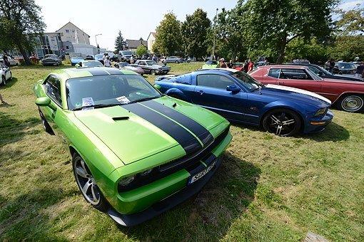 Coole US-Cars im Schwabengarten