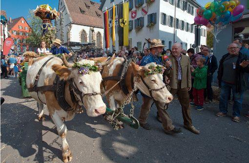 Tausende Besucher bei traditionellem Umzug