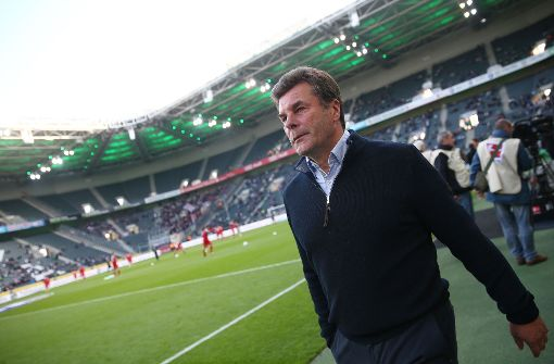 Gladbach-Trainer Dieter Hecking  Foto: Bongarts