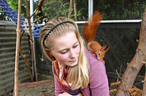 Die Tierarzthelferin Fabienne Widera ist Eichhörnchen-Expertin. Ganz viele Bilder ihrer possierlichen Tierchen gibt es in unserer Fotostrecke. Foto: Eveline Blohmer