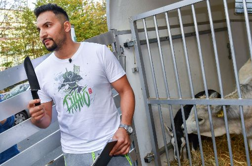 Vegan-Koch verliert Steak-Wette