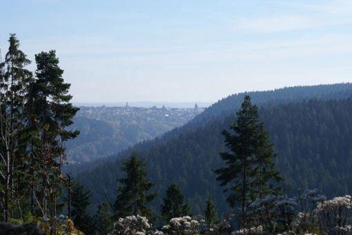 Wundervolle Ausblicke über den Nationalpark Schwarzwald  Foto: Freudenstadt Tourismus