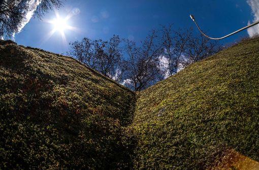 Blauer Himmel, grüne Mooswand Foto: Lichtgut/Max Kovalenko