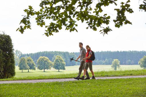 Wandern auf der Wandertrilogie Allgäu rund um Bad Wörishofen  Foto: Kur- und Tourismusbetrieb Bad Wörishofen