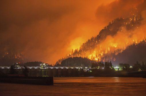 15-Jähriger soll Millionenstrafe wegen Brandstiftung zahlen