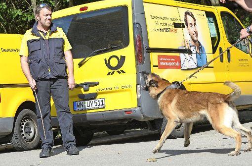 Kampfhunde wieder im Kommen