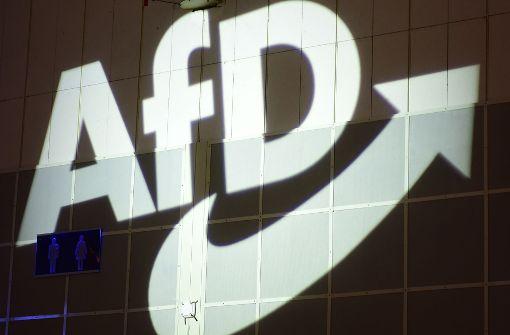 AfD-Fraktion verklagt den Landtag