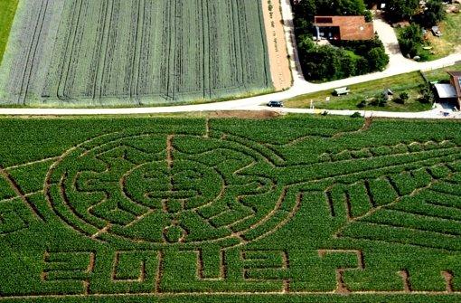 Im Maislabyrinth zu den Mayas