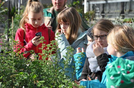 Die Mädchen und Buben durften in der Wilhelma hinter die Kulissen blicken. Foto: Claudia Leihenseder