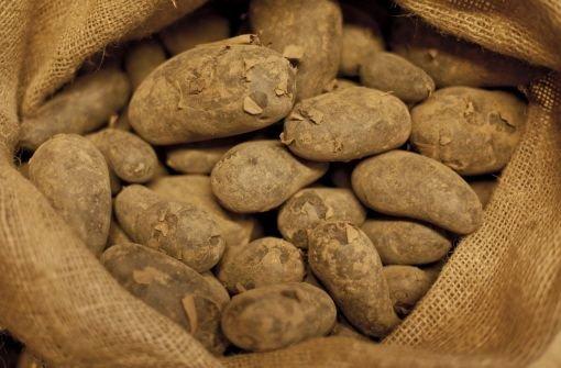 Die kleine Kartoffelkunde