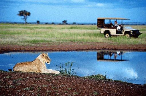 Vom Wilderer zum Konditor