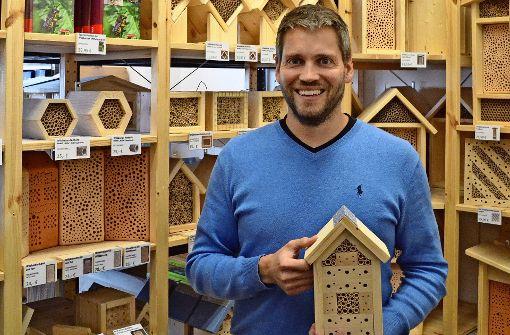 Wildbienenschutz auf dem Stadtbalkon
