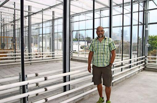 Stefan Rühle ist an der Uni Hohenheim für die Gewächshäuser zuständig. Er freut sich bereits, wenn der erste Bauabschnitt des Phytotechnikums fertig ist. Foto: Ralf Recklies